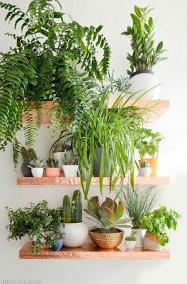 Indoor Kräutergarten Ideen pinterest
