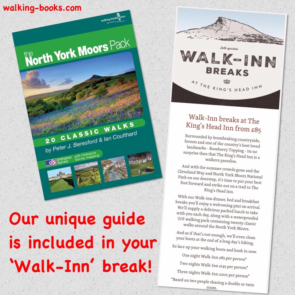Climbing Roseberry Topping with Kids - Walk Inn Guide