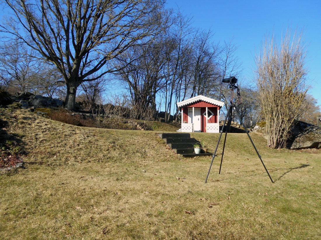 Fotografando in giardino