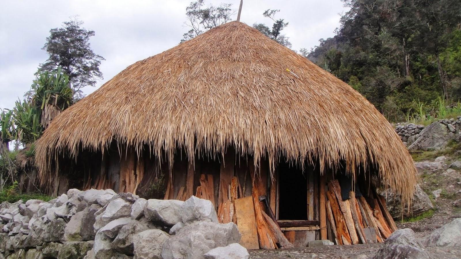 rumah adat honai