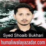 https://www.humaliwalayazadar.com/2019/09/syed-shoaib-bukhari-nohay-2020.html