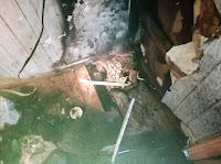 На площади 1 кв. метр повреждены: пол, стены в квартире, расположенной на 2-м этаже муниципального 5-этажного жилого дома.