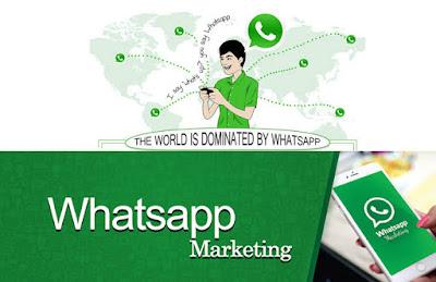 Jasa Whatsapp Blast Muara Jambi - DokterBola.online