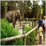 zoo in spanish