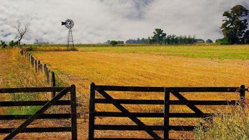 Por la cuarentena eternum el mercado inmobiliario rural se quedó sin precios