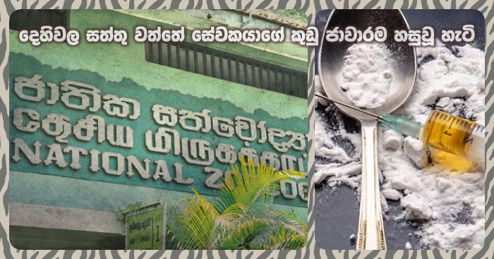 https://www.gossiplankanews.com/2019/10/drug-case-dehiwala-zoo.html