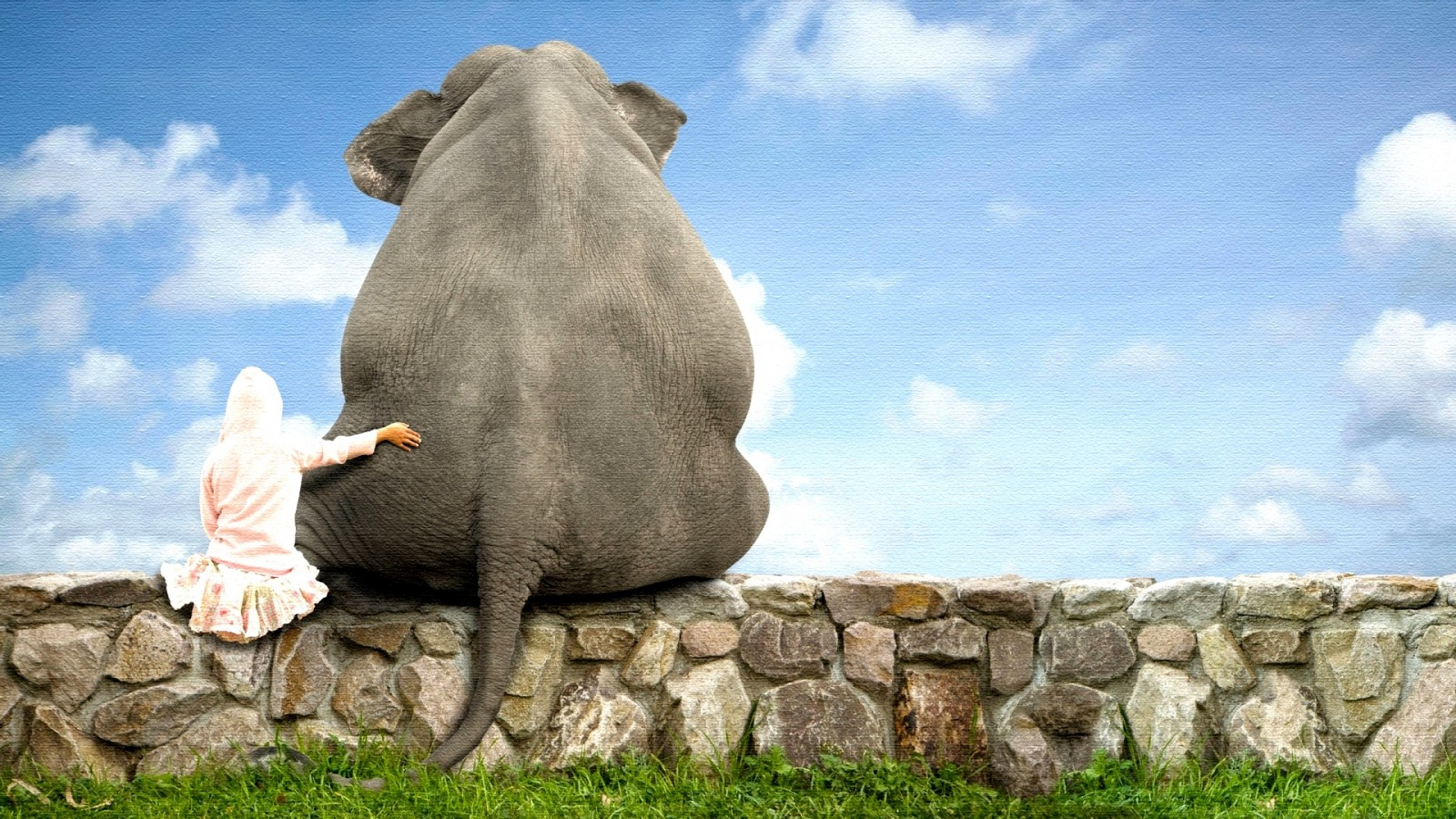 Hd wallpaper elephant - Elephant Pictures For Kids