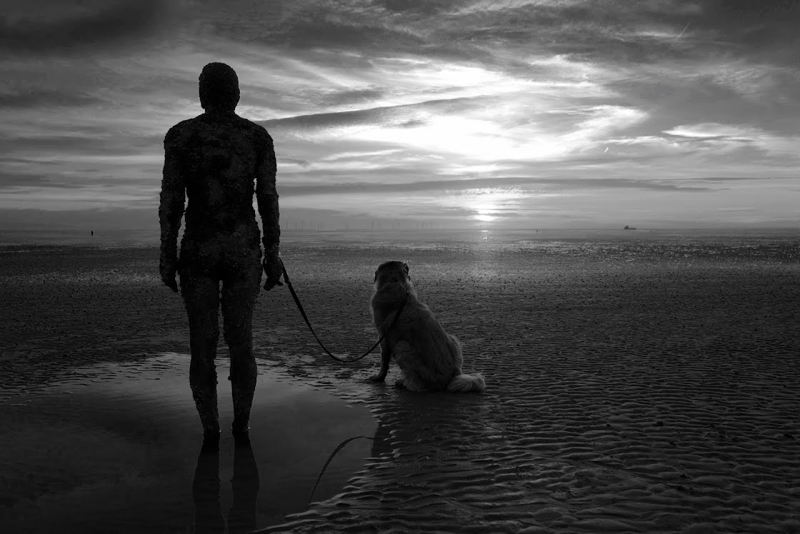Man And Dog On Beach