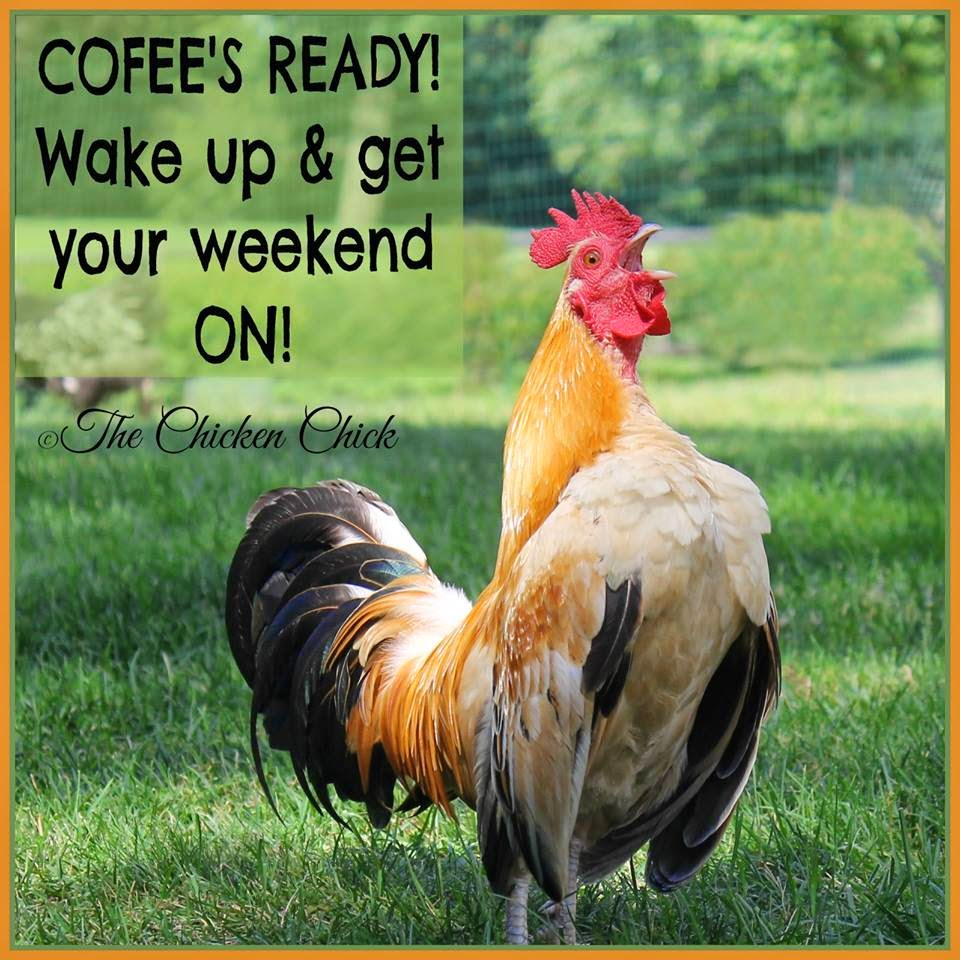 Wake up and get your weekend ON!