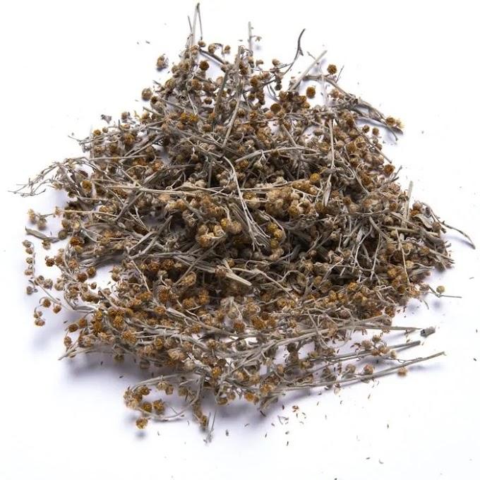 Αψιθιά – Absinthium 50γρ.