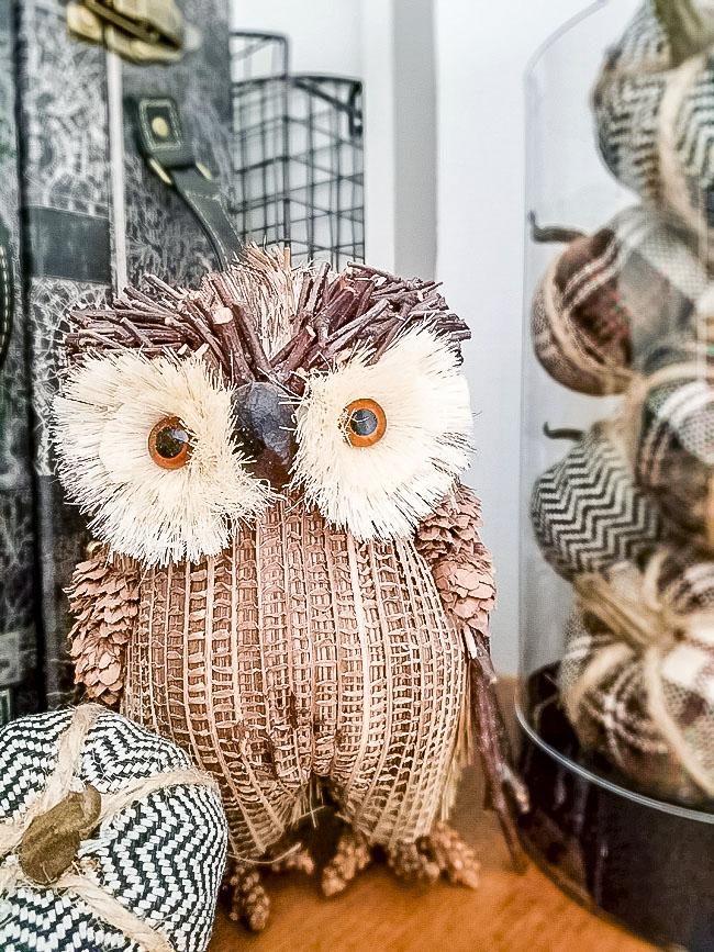 Target plaid and herringbone little pumpkins set. old owl decor
