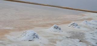 الملح الطبيعي / البحر الوردي في شنة بولاية محوت