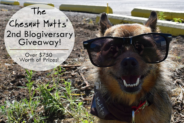 The Chesnut Mutts' 2nd Blogiversary Giveaway!