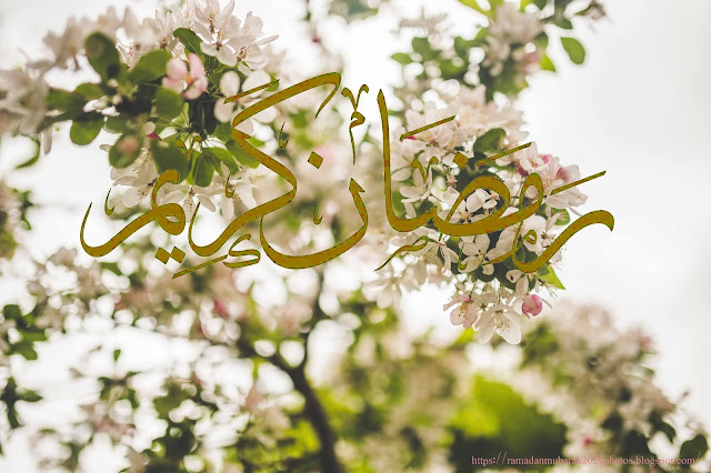 top 10 best top 10 Ramadan Mubarak images 2020