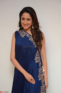 Pragya Jaiswal in beautiful Blue Gown Spicy Latest Pics February 2017 078.JPG