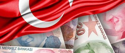 قرأة فى الأقتصاد السياسى التركى pdf