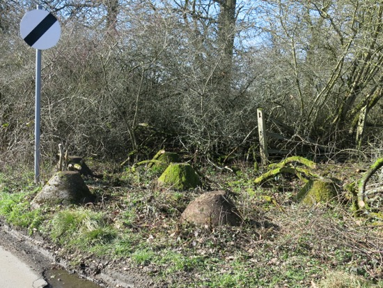 Photograph of the tank traps along Bradmore Lane, Brookmans Park. Image from Peter Miller