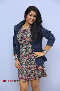 Actress Manisha Tagore Pictures at Hyderabad Love Story Platinum Disc Function  0002.JPG