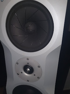 TACT Audio C1-D Speaker (Demo) 20200915_183318