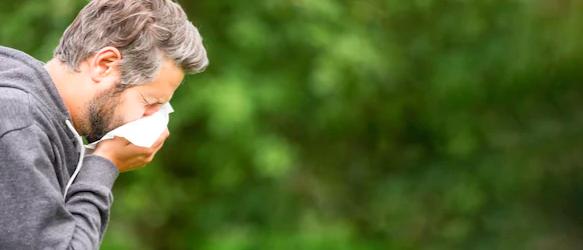 小兒過敏專科 鄭堪弘醫師: 淺談過敏性鼻炎的治療
