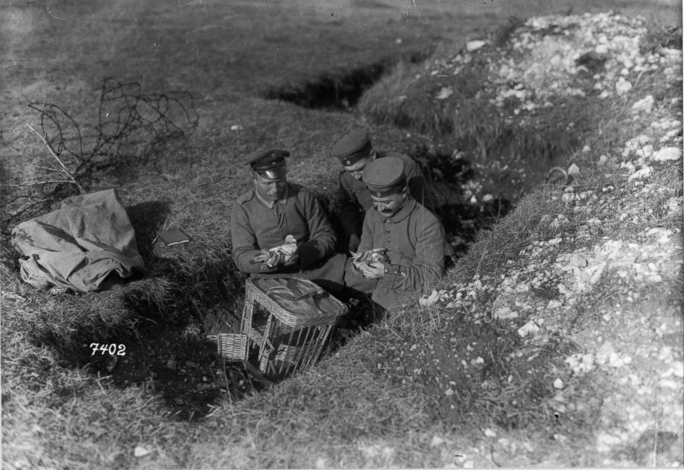 two German soldiers on the Western Front are seen with their pigeons.