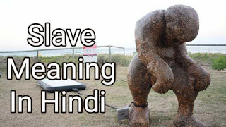 Slave meaning in hindi