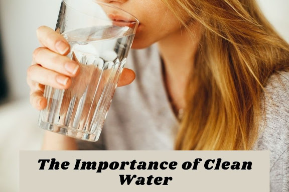 The Importance of Clean Water - Ultimate Guide in 2021