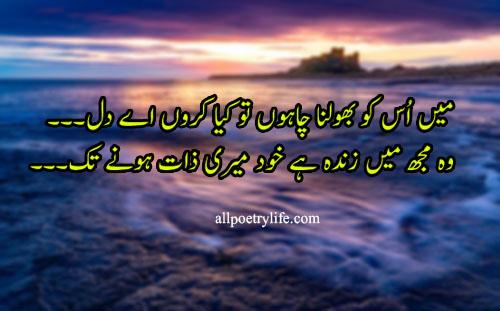 Mein Us Ko Bholna Chahon To Kia Karon Ay Dil | poetry status for whatsapp in urdu quotes