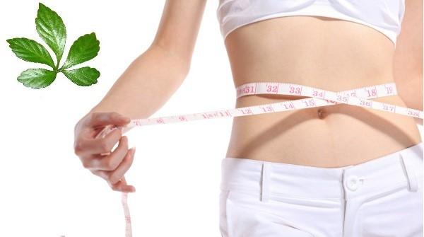 Phương án giảm cân an toàn và hiệu quả cho cơ thể