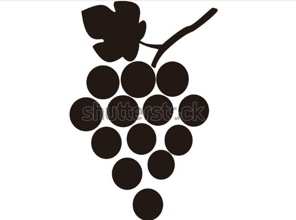 illustration design grape icon