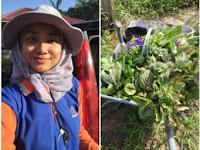 Punya Gelar S2, Wanita Cantik Ini Pulang Kampung Pilih Jadi Petani