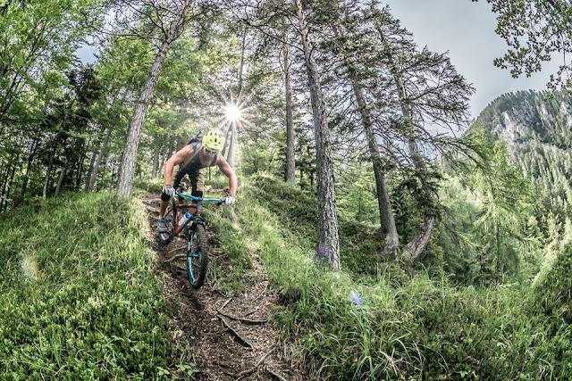 Stahl Hardtails Vorteile Mountainbike MTB Enduro Trail Downhill Bikebergsteigen