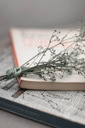 Imagen decorativa de libros