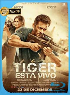 Tiger está vivo (2017) HD [1080p] Subtitulado [GoogleDrive] SilvestreHD