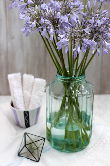 Blue Agapanthus flowers in glass jar