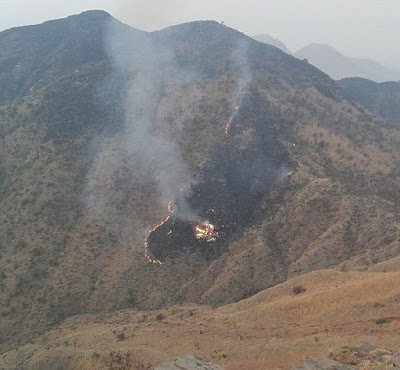 47 People In Pakistani Jet Feared Dead After Plane Explodes Into A Mountain (Photos)