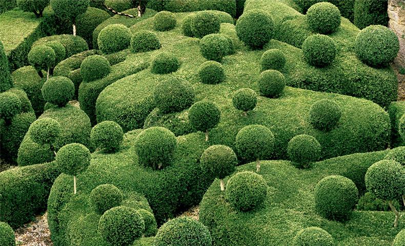 Vistas surrealistas de los Jardines Topiary de Marqueyssac fotografiados por Philippe Jarrigeon