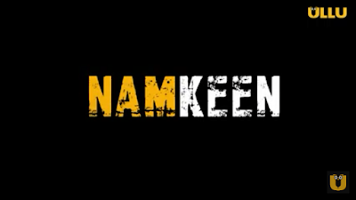 Namkeen Ullu Webseries Cast, Release Date & StoryLine Or How To Watch Online?