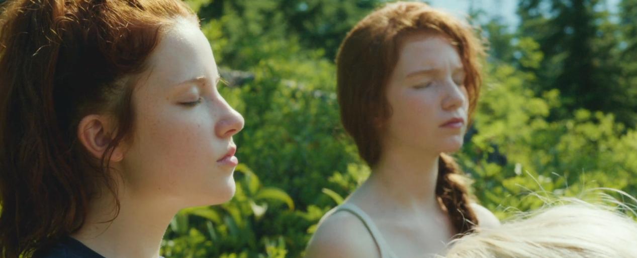 Capitão Fantástico e a quantidade de reflexões que um filme pode oferecer | neodesvario | resenha | blog | conversa