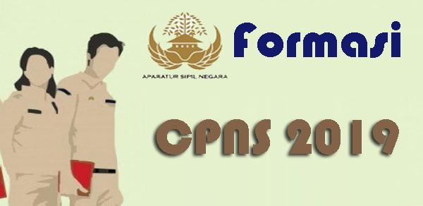 Formasi CPNS Lampung Tahun 2019