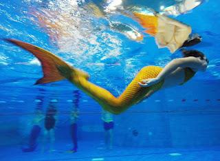 Κι όμως συνέβη κι αυτό: Πρωτάθλημα κολύμβησης για γοργόνες στη Γερμανία