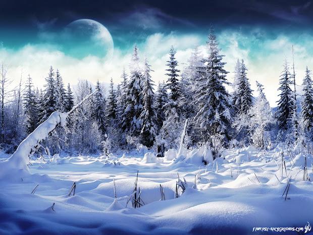 Winter Wonderland Desktop