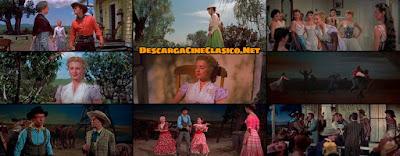 Fotogramas: Oklahoma (1955)
