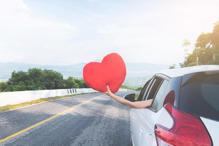 자동차보험 비교 sk
