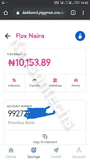 Flex Naira Dashboard
