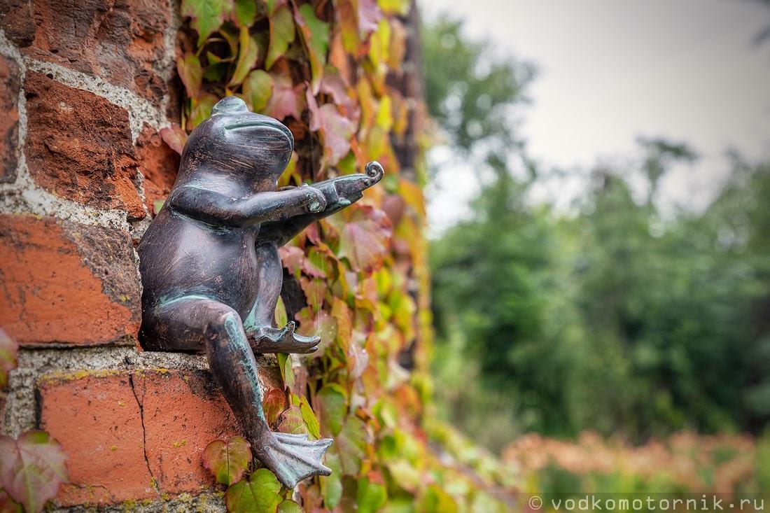 Жаба - музыкант водонапорной башни в поселке Светлое