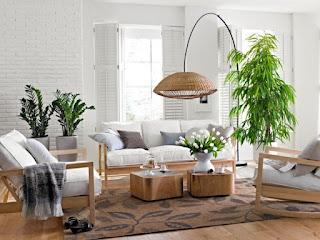 sala blanca con plantas