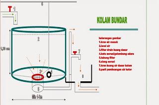 cara membuat air bioflok,persiapan air kolam bioflok,cara membuat air bioflok