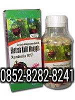 Ekstrak Kulit Manggis Xantonia 977 90 kapsul