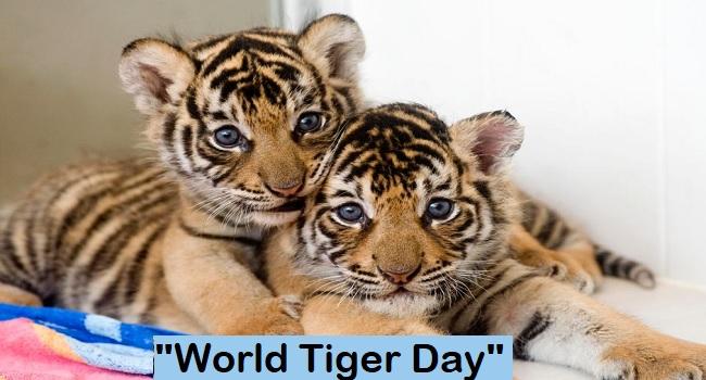 World Tiger Day 2021